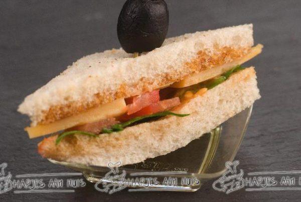 Mini sandwich oude kaas